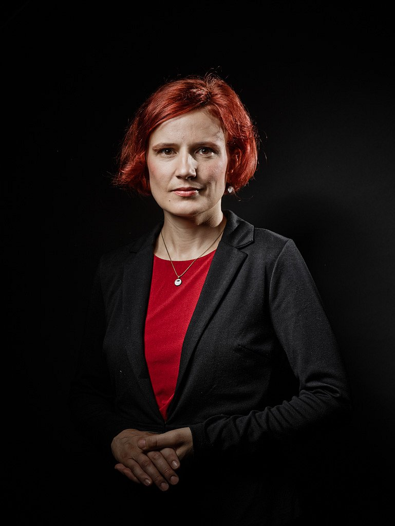 Katja Kipping, Die Linke